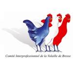 Logo-CIVB-300x300